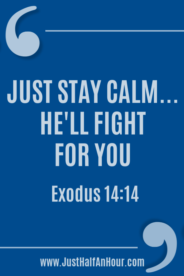 Just Stay Calm… He'll Fight For You
